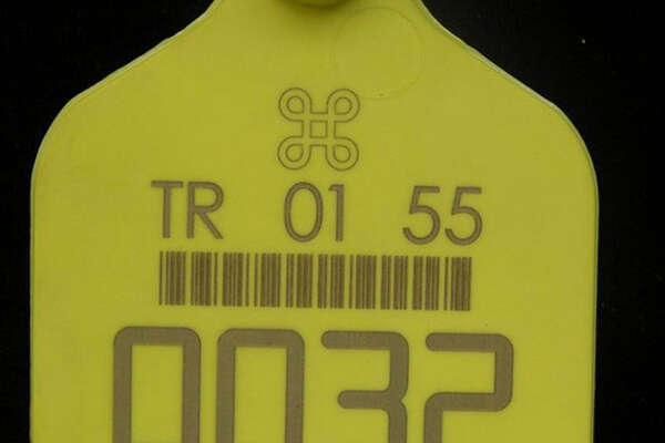 laser marking on plastic label